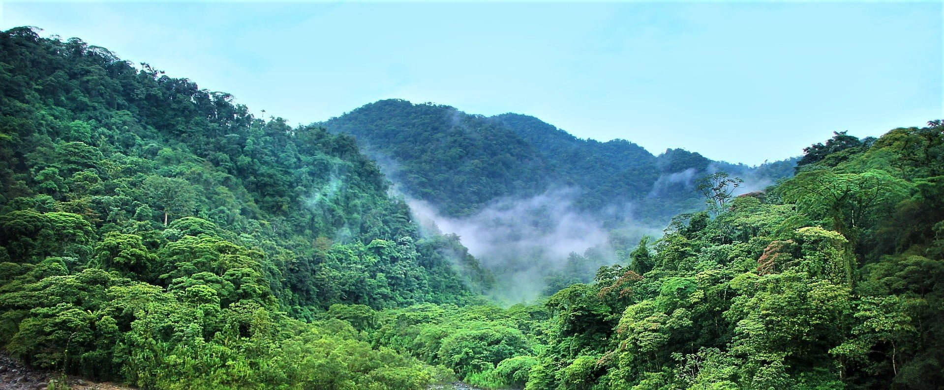 Amazonas brinner – detta kan kyrkorna göra